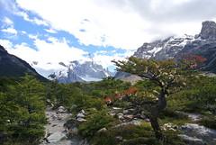 Laguna Torre Hike, El Chalten, Argentina (jeremaixs) Tags: park parque patagonia argentina los hiking el hike national nacional chalten glaciares