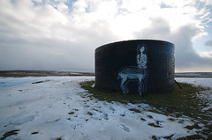 Coloquix (tombomb20) Tags: street woman streetart art lady hair naked nude graffiti derbyshire sheffield tunnel deer graff moor shaft ventilation totley 2015 tombomb20 coloquix