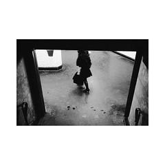 (Florian.lx) Tags: street leica paris 35mm calle kodak trix summicron rue m6 tx400 strase kingoflol