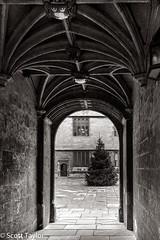 View Into The Courtyard (Scrufftie) Tags: uk england bw monochrome canon mono blackwhite unitedkingdom streetphotography style oxford gb oxforduniversity lightroom bodlieanlibrary canon5dmkii canonef35mmf2isusm photoshopcc