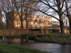 IMG_0653 (Momo1435) Tags: netherlands den nederland rijn aan alphen