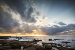 Solace (Timothy M Roberts) Tags: nikon sydney australia maroubra