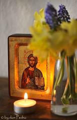 blijft-waakzaam.-.-. (Don Pedro de Carrion de los Condes !) Tags: vrede icon avond wereld bloemen donpedro voorjaar vrijheid lichtje icoon pantocrator waakzaam d700