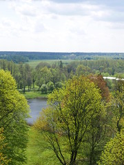 The old palace park in Bialowieza (roomman) Tags: world park lake nature water beautiful forest landscape nationalpark pond natural poland polska national end bialowieza 2016 białowieża reser djungle