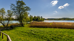 Walk along the lake (hjuengst) Tags: trees lake reed backlight clouds bayern bavaria see path walk wolken wideangle bume chiemsee schilf weg gegenlicht spaziergang weitwinkel seeon klostersee