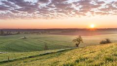 Sunrise over Illertissen (Sebo23) Tags: sun clouds sunrise licht wolken sonne sonnenaufgang sonnenstrahlen morgenlicht illertissen lichtstimmung canon6d canon24704l