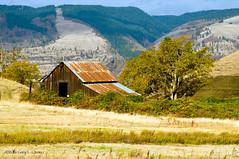 Old Barn, Mosier, Oregon, Fall 2015 (Gary L. Quay) Tags: oregon barn columbia quay gary gorge mosier ortley