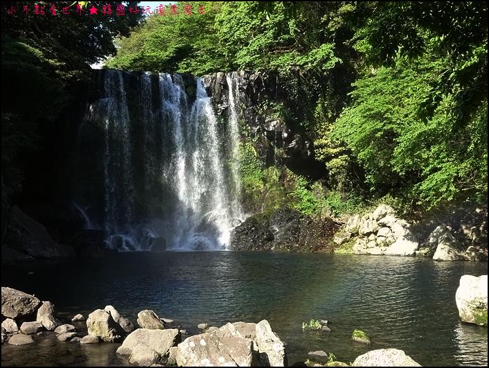 濟州島天帝淵瀑布 (32).JPG