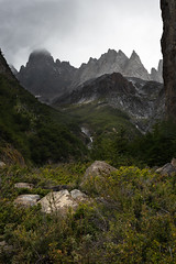 Patagonian Teeth (courtney_meier) Tags: chile cliff patagonia mountain mountains forest andes torresdelpaine stormclouds rainclouds andesmountains temperateforest kniferidge patagonianbeech