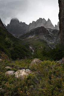 Patagonian Teeth