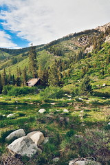 (mzistel) Tags: sequoianationalpark sequoia mineralking mineral king hiking cabin outdoors landscape california nationalparks vsco green trees travel hike adventure