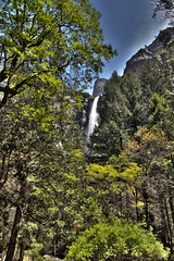 Brideveil Falls, Yosemite National Park (Mastery of Maps) Tags: california park ca trees green nature water pine forest outdoors nationalpark spring natural falls waterfalls yosemite yosemitenationalpark naturalbeauty sierranevada yosemitevalley usnationalpark 2016 brideveilfalls brideveil