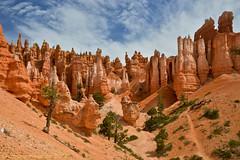 Bryce Canyon - from the bottom (simone_a13) Tags: usa utah unitedstates canyon erosion geology brycecanyon hoodoos