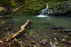 rdgmalom (Devil's mill) waterfall (Pl Sovny) Tags: nature creek forest waterfall pond long exposure hungary branch visegrd
