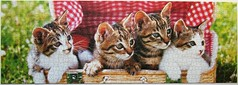 Ktzchen im Korb (Leonisha) Tags: picnic basket kittens puzzle katze jigsawpuzzle picknick ktzchen korb