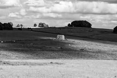 Light on the Barn (l4ts) Tags: landscape blackwhite derbyshire peakdistrict cloudscape sheldon whitepeak fieldbarn cloudshadows britnatparks hardrakeplantations