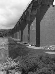 Big Water of Fleet Viaduct near Gatehouse of Fleet. (kyliepics) Tags: olympus e520 evolt520 olympuszuikodigital1122mmf2835 darktable blackwhite