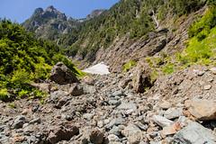 IMG_6516 (Bob_2006) Tags: june hike 2016 goldenearsprovincialpark evansvalley