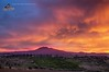 Etna , alba (Di Caudo Antonio) Tags: red nuvole alba cielo etna vulcano cumulo cumulonembo etnasud