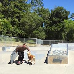 Skate tough (seanflannagan) Tags: california dog skateboarding skatepark skate brutus mansbestfriend benlomond santacruzcounty