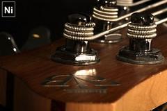 Periodic Table - [MacroMonday_20160704] (Arranion) Tags: music canon eos bass guitar head indoor string tune themed hmm ibanez periodictable btb 40d macromondays macromonday