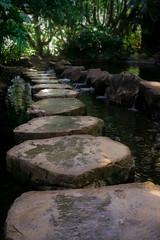 IMG_9944 (mitchellduff) Tags: portrait nature driving stones roadtrip stepping serene toowoomba