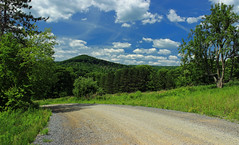 Sugarcamp Mountain (18) (Nicholas_T) Tags: road trees summer sky clouds pennsylvania hills cumulus creativecommons dirtroad gravelroad endlessmountains loyalsockstateforest lycomingcounty sugarcampmountain sugarcampmountainroad