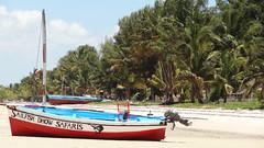 Sailfish Dhow Safaris, Vilanculos, Mozambique (dannymfoster) Tags: africa beach mozambique dhow mocambique vilankulo vilanculos sailfishdhowsafaris