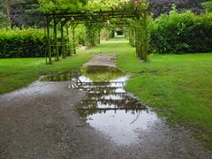 Ook dit is zomer (~~Nelly~~) Tags: rain pluie regen mechelen plassen vrijbroekpark flaques