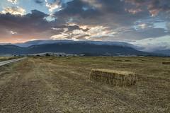 Bales & sunset (roskil) Tags: pacas pajas straw bales campo field cielo sky sunset atardecer anochecer arteaga navarra nafarroa navarre espaa spain espagne spanien