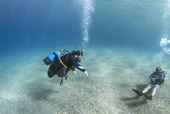 2613 Andrew Searle (KnyazevDA) Tags: sea underwater wheelchair scuba diving disabled diver padi undersea handicapped amputee disability