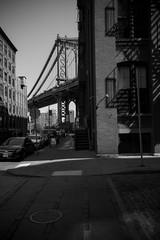 Dumbo, Brooklyn, NY (Drew Dies) Tags: sculpture fish brooklyn dumbo bridges bikes tunnel bicycles manhattanbridge cherryblossoms