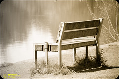 Single & Benched (mikesteph0) Tags: lake nature wet water scenery natural outdoor lr4