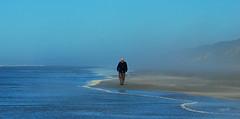 Pacific Stroll (Paparb) Tags: blue beach fog sand pacificocean washingtonstate copalis