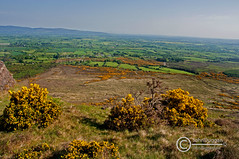Tipperary Country 95330613. (johndugganfoto) Tags: ireland tipperary thevee johndugganfoto ei8frb