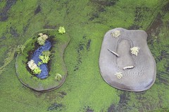 Terrain 01 LBER (Blue Table Painting) Tags: blue terrain painting table board mini 01 warhammer wargaming lber