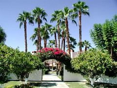 Indian Wells 02 (mfnure31) Tags: california arch palm palmtree archway indianwells