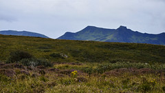 The Distant Hills DSC_3804 (iloleo) Tags: green nature beauty landscape scotland highlands view isleofskye heather scenic hills nikond7000