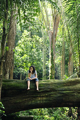 woman relaxing on a fallen tree trunk in a tropical forest (olaialalala) Tags: trees people woman tree green nature beautiful beauty smile rain smiling female forest relax outside outdoors happy person one rainforest sitting break peace natural outdoor joy relaxing scenic lifestyle happiness tourist calm jungle fallen enjoy harmony tropical trunk tropic environment balance recreation resting copyspace cheerful relaxation enjoying balanced equilibrium dense