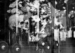 20130806 (zzkt) Tags: brussels reflection film skull eyes iso400 bruxelles 400tx be brussel greyscale leicam6 bruxxel kodaktrix400 brsel leicasummicronm35mmf2iv