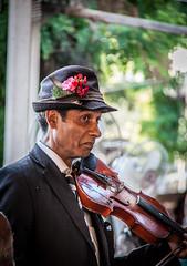 Violinista (terron2011) Tags: calle violin sinfonia sombrero artista estambul serenata callejero musico buscavidas