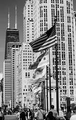 Magnificent Michigan Avenue (John Hill Photography) Tags: street bridge people chicago tower canon john 50mm flickr michigan hill ave wgn hancock f18 50 avenue magnificent mag mile tribune fifty nifty chicagoist 60d