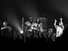 The Head and the Heart (jhwill) Tags: blackandwhite bw music blackwhite concert michigan livemusic band olympus royaloak omd blackdiamond em1 75mm silverefexpro 75mm18 theheadandtheheart omdem1 olympusomdem1