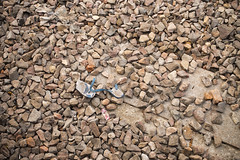Abandoned (Shubh M Singh) Tags: india abandoned broken stone out hawaii alone rubber flip worn flops nikkor 35 sandal relaxo chappal