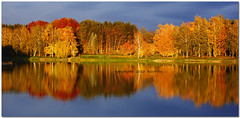 (tozofoto) Tags: travel autumn trees sky lake holiday travelling nature water colors canon landscape lights europe hungary shadows waterreflections zala tozofoto vision:outdoor=0848 vision:sky=0837