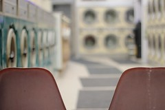 (sonyacita) Tags: pink blur dof chairs laundromat throughawindow