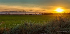 California Sunset (DavidHenkins) Tags: california sunset sky sun mountains colors field grass landscape colorful setting bushes