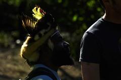 _DSC0657 the GUEST ... (ipon1) Tags: light sunlight nature backlight nikon lotus bokeh lumière ngc streetlife tourist 300mm oiseaux mfcc voyageur nikond90 攝影發燒友