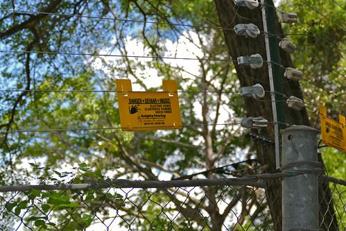 southafrica bergendal kruger electricfence