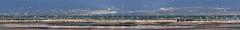 Long Beach (kunstschieter) Tags: sea panorama beach birds strand scheveningen gulls vogels zee meeuwen